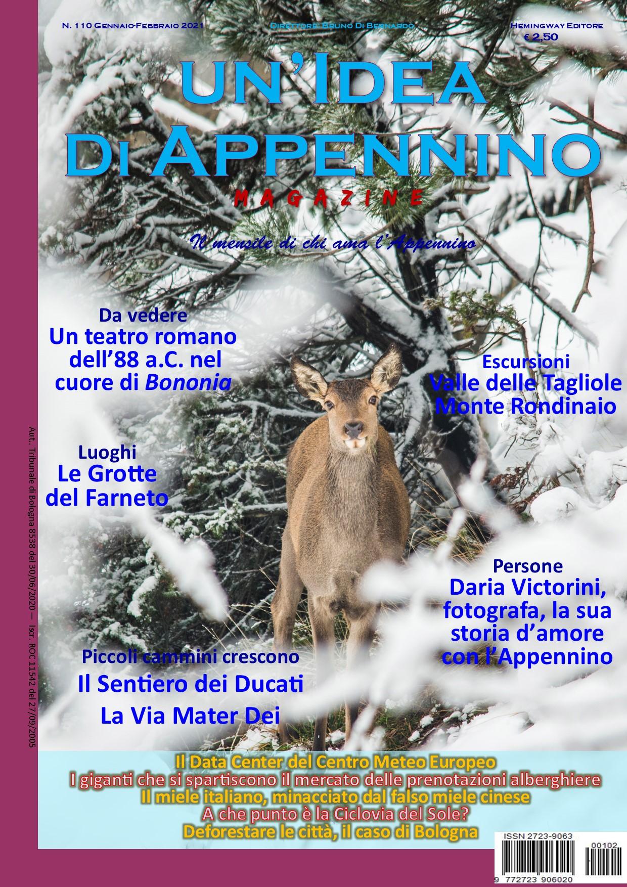 Idea110Magazine_Gennaio21_Copertina Cervo neve